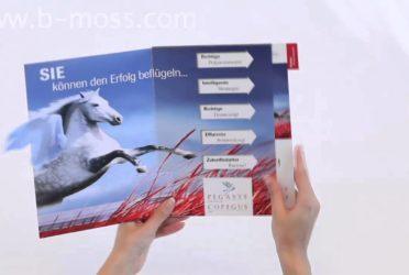 Pegasus Wing Tabbed Brochure