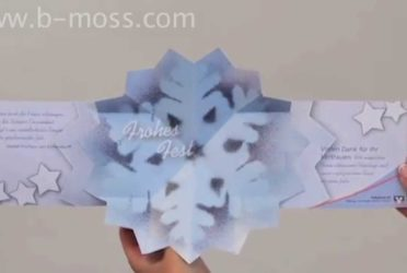 Snow Flake Starburst/Mappa