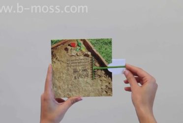 Square Lamella/Picture Changing Card